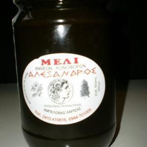 ΜΕΛΙ ΔΑΣΟΥΣ ΝΤΑΛΑΜΠΕΚΑΣ