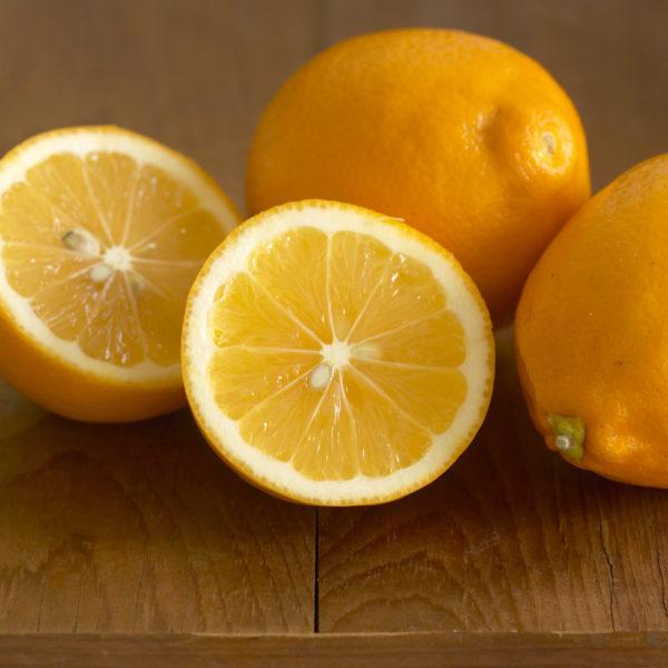 ING-meyer-lemons-main