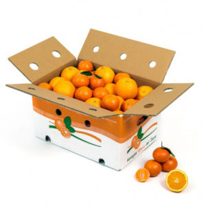 mixed-ORANGES-TANGERINES